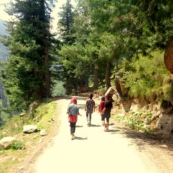 trekking in tosh